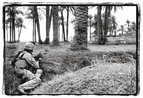 Soldier Crouching in Grasses