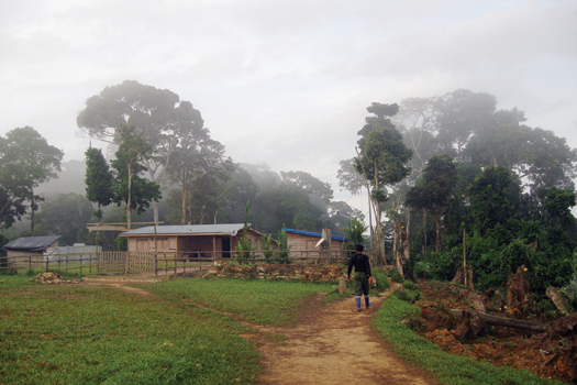 Mining and Processing Congo's regional outpost near Bisie