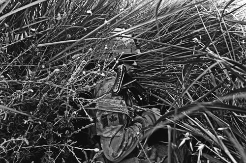 Well-hidden, a soldier crouches down in reed-like grasses to conceal himself.