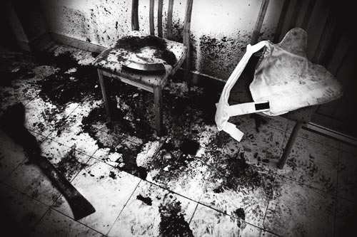 A grisly scene, rendered in black and white, shows where the president was assassinated. The floor is puddled with dried blood, which is also spattered on the walls. It's centered on a chair, on which a banana clip of ammunition rests. A bulletproof vest rests on the adjacent chair. On the floor lies a blood-encrusted machete.
