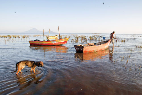 Nicaraguan ichthyologist Lorenzo López reports finding numerous fish with defects in Lake Xolotlán, but some local residents still eat their catch from the poisoned waters.