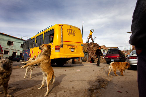 Dogs and men near parked vehicles in the Minder's Plaza at Potosi.