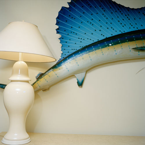 A close-cropped shot of a bright blue swordfish mounted on a wall near an ivory-colored table lamp.