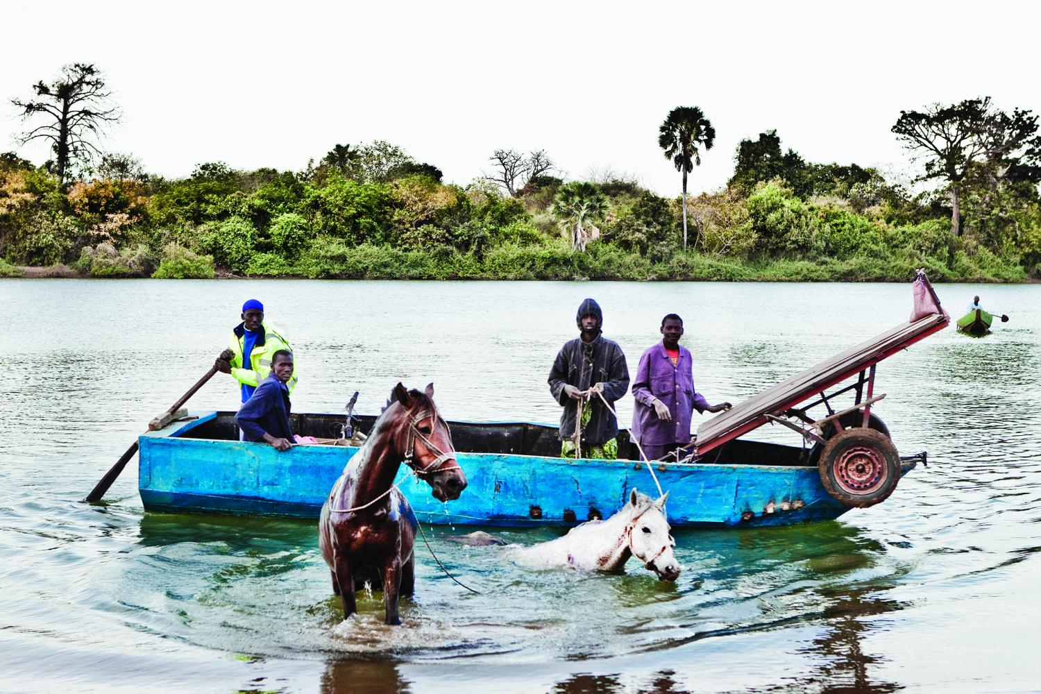 Life on the River Gambia VQR Online