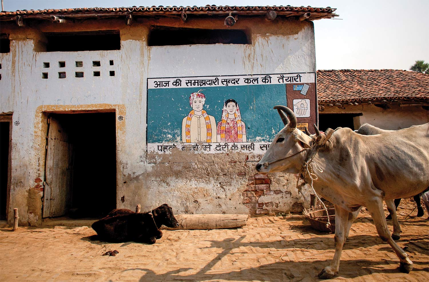 A Pathfinder mural advertising the benefits of family planning and reproductive health, in the village of Kazarshoth, 2013.