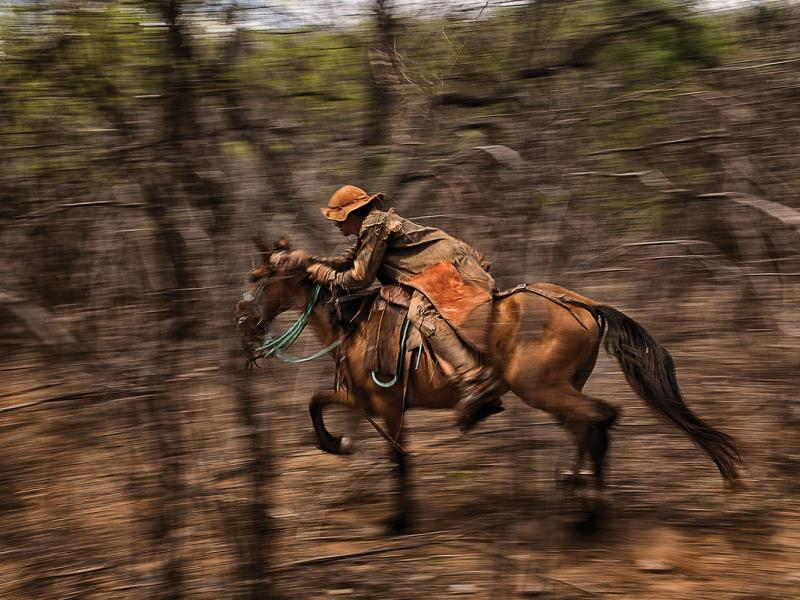 Feitosa in the backcountry. Artisans known as seleiros made the leather gear he wears from head to toe to protect him from the brush.