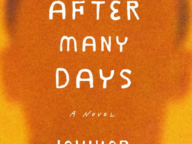 And After Many Days. By Jowhor Ile. Tim Duggan Books, 2016. 256p. HB, $25.00.