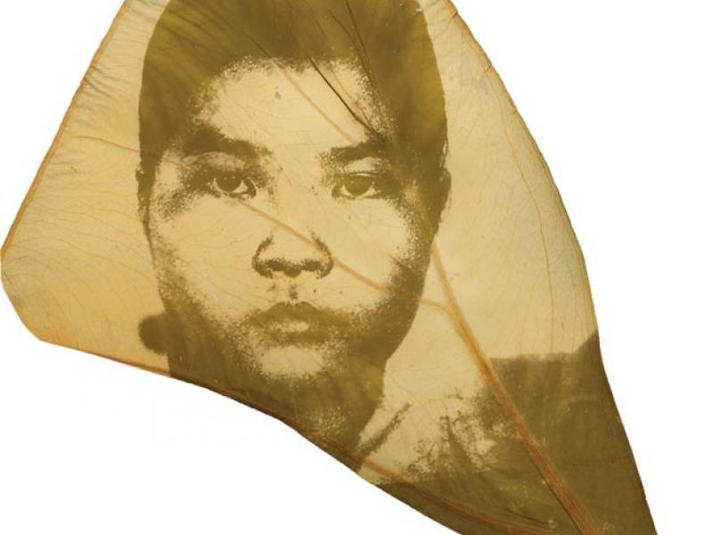 Binh Danh, <i>The Botany of Tuol Seng #14</i>. Photographic negative on leaf.