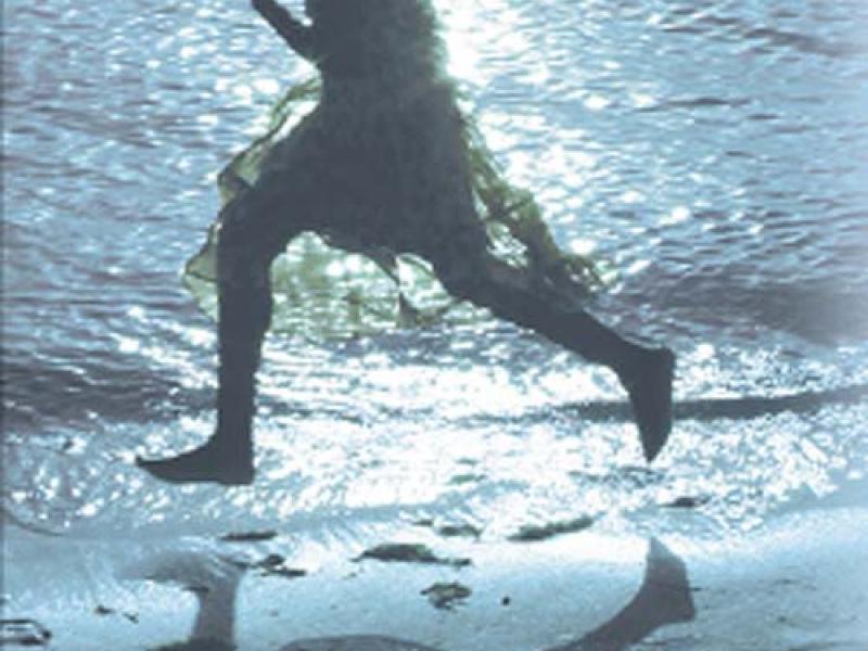 Claire of the Sea Light. By Edwidge Danticat. Knopf, 2013. 256p. HB, $25.95.